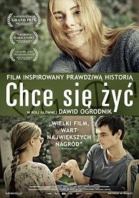 Kino Iluzjon Kino Od Kuchni Montaż W Warszawie Esensja